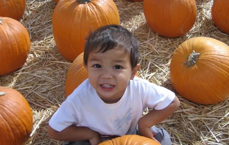 Halloween with little ones
